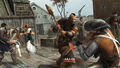 ACIII Ours Dame Rebelle Fort Wolcott