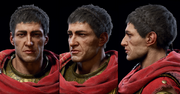 ACOD Stentor head models