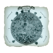 AC4BF Solaris from Mundus Subterraneus