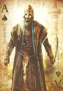 ACR playing cards Tarik