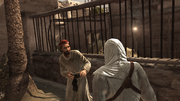 Tamir Interrogation 2