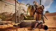 ACO What's Yours Is Mine - Bayek finding Corteseos
