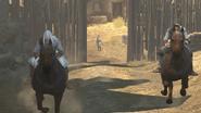 Darim chevaux