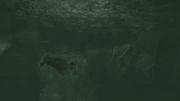 Narrow Escape 9