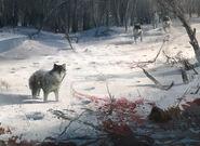 ACIII Frontière Loups concept