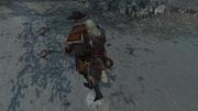 The Treasure Hunter 3