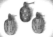ACD Golden Turtles badge
