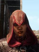ACL Assassin Hood