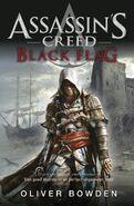 Black flag - cover