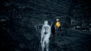 Il covo del fuorilegge 2