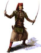 Agile Ottoman fighter Artwork