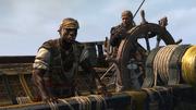 This Tyro Captain 2