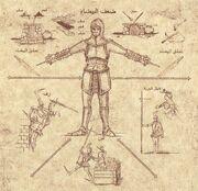 Codex 13.jpg