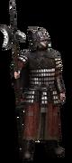 Guard-varangian-ACR