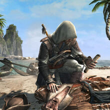 ACIV Black Flag screenshot 23 luglio 2013 3.jpg