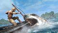 Edward requin combat