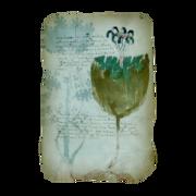 ACIV Folio 35r