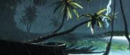 ACIV orage palmier