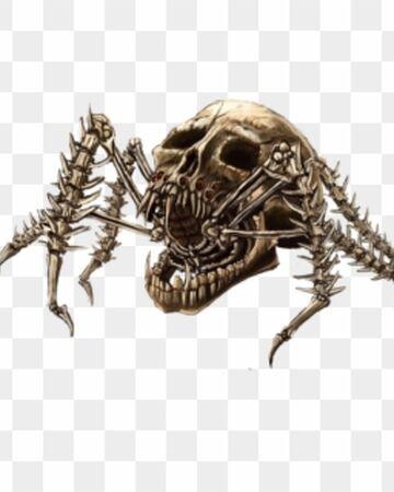 Bone Construct Spider