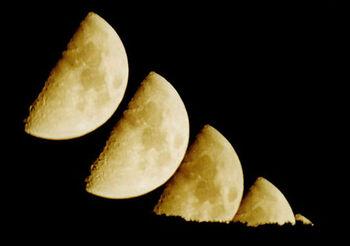 Luna v.jpg