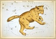 Sidney Hall - Urania's Mirror - Ursa Major