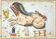 Sidney Hall - Urania's Mirror - Psalterium Georgii, Fluvius Eridanus, Cetus, Officina Sculptoris, Fornax Chemica, and Machina Electrica