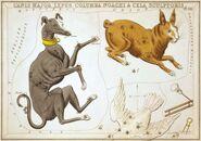 Sidney Hall - Urania's Mirror - Canis Major, Lepus, Columba Noachi & Cela Sculptoris
