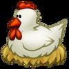 Farm animal1 chicken.png