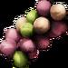 Sea Grapes.png