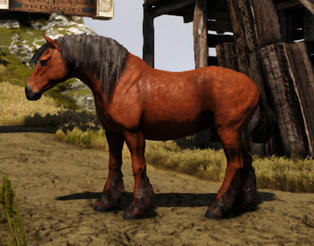 Horse With Background.png