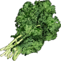Cooking Herbs.png