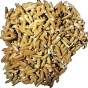 Rice Seed.png