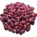 Beans.png
