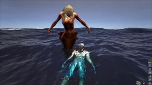Mermaid Image.jpg