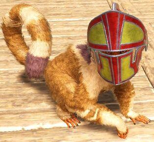 Monkey Wearing Helmet.jpg