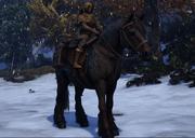 Screenshot 34 Horse.png