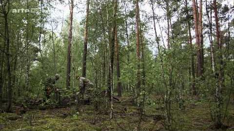 Doku_Tschernobyl_-_Die_Natur_kehrt_zurück_HD