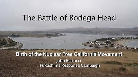 The_Battle_of_Bodega_Head_(updated)