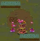 Flamingo camp