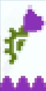Purppura suvun vaakuna