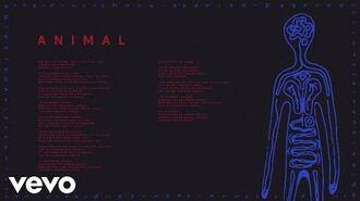 AURORA_-_Animal_(Audio)