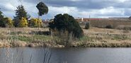 Fyshwick over the Molonglo