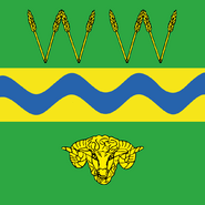 Wagga flag HD