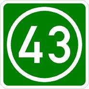 Knoten 43 grün