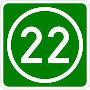 Knoten 22 grün
