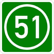 Knoten 51 grün