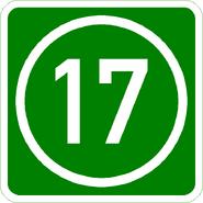 Knoten 17 grün