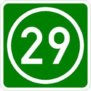 Knoten 29 grün