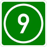 Knoten 9 grün