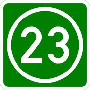Knoten 23 grün